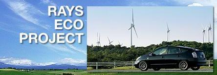 EcoDrive Prius!